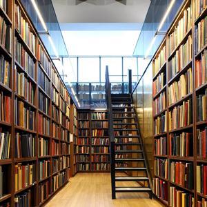 Библиотеки Суры
