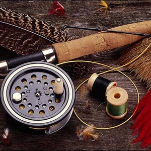 Охотничьи и рыболовные магазины Суры